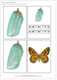 hungry caterpillar retelling
